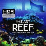 4K UHD/3D Blu-ray Review: THE LAST REEF: CITIES BENEATH THE SEA
