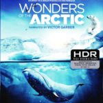 4K UHD/3D Blu-ray Review: WONDERS OF THE ARCTIC