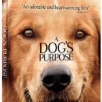 Giveaway: Win A DOG'S PURPOSE on Blu-ray Combo Pack